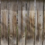 Free Wall and Wood Textures