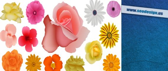 Photoshop Floral Flowers Vector Brushes