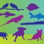 70+ Free Animals Birds Vector Art silhouettes Graphics