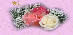 free-roses-flowers-wallpapers-download