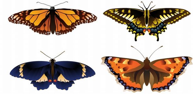 free-butterfly-grunge-vector-art-graphics