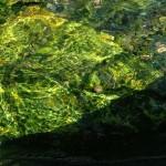 16 Seamless Liquid Glass Textures Download