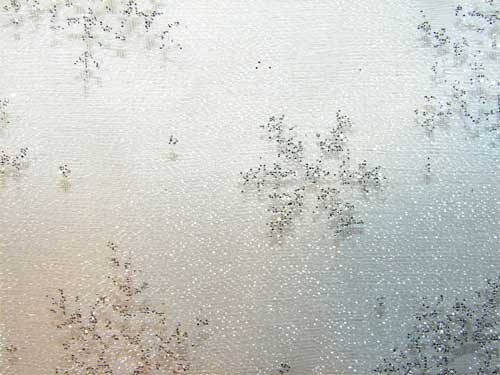 snowflake photoshop brushes white