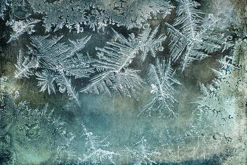 christmas frost white texture