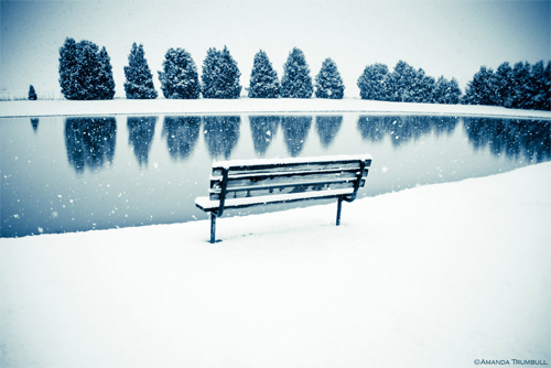 Free Beautiful Backyard Winter Desktop Background