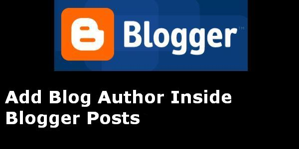 author box inside blogger posts