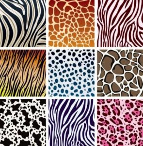 animals-skin-patterns-2