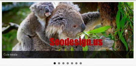 Free WordPress Slider Plugins