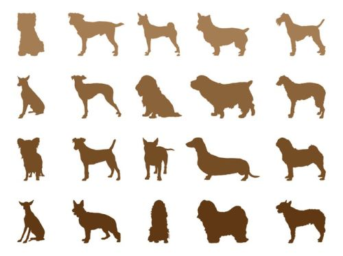 Cats Dogs Vector Silhouettes