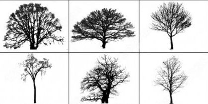 28 Free Photoshop Tree Brushes