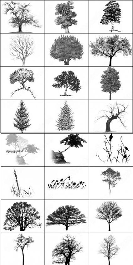 28 Photoshop Tree Brushes Download