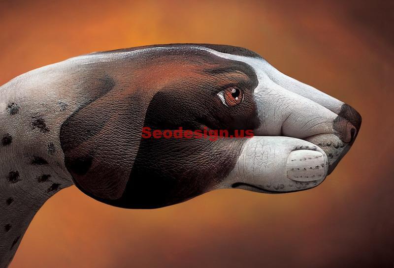 10 Hand Animals Wallpapers Illustration