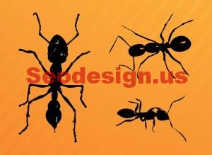 Ant Clip Art Graphics