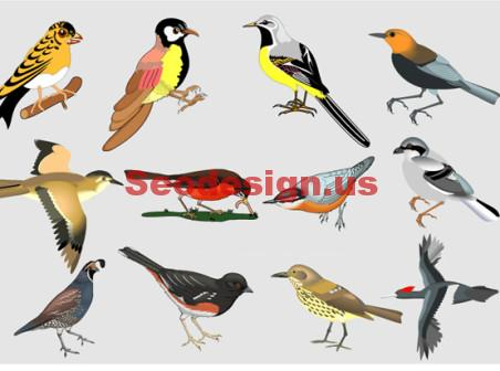 Colorful Birds Vector Art