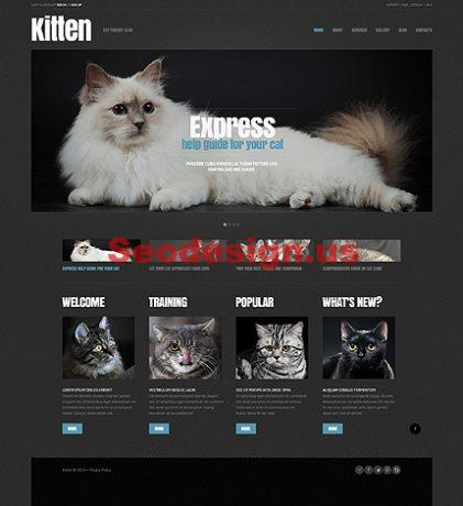 Best Pets Animals Wordpress Themes