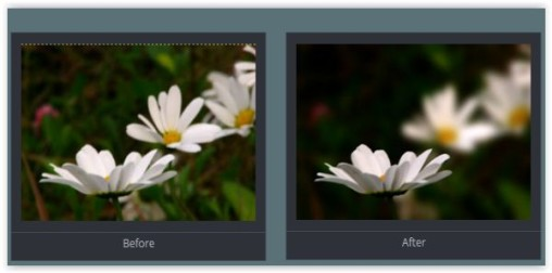 Gimp Tutorials: Depth of Field Blurring