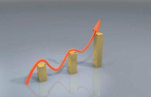 Building a Successful Website in a Niche Market